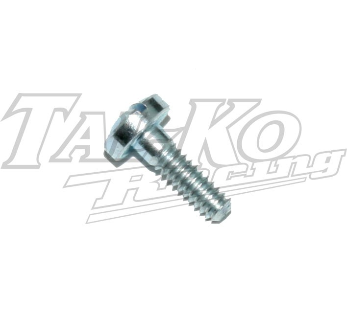 TRYTON CARB FILTER SCREEN COVER SCREW